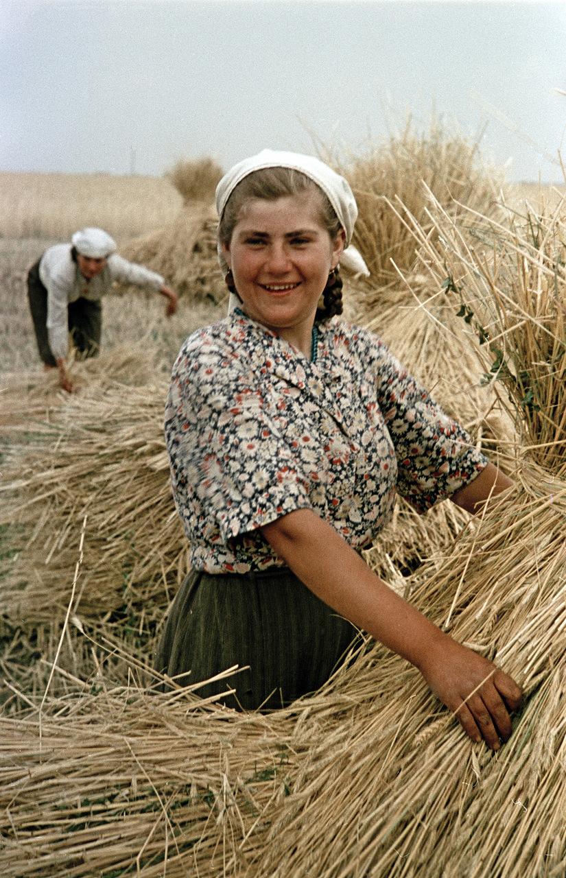 В украинском совхозе. Фотограф Семен Фридлянд
